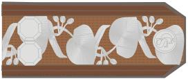 07-štábní-rotmistr-c-1925-1929