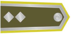 13-major-1921-1924