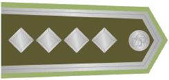 15-plukovník-1921-1924