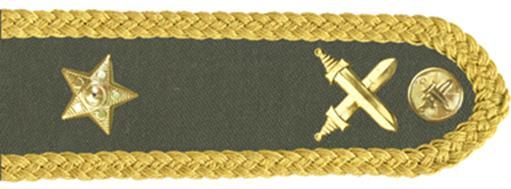 17-brigadni-general-of-6